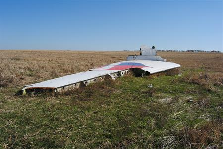 Wing of MH17